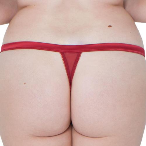 String/Tanga Surrender Scantilly