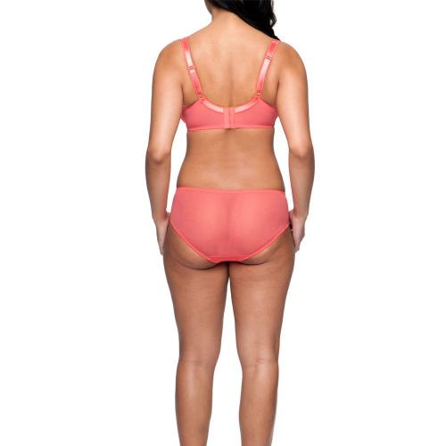 Curvy Kate Shorty/Boxer