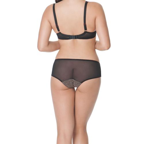 Shorty/Boxer Curvy Kate Wild Cat